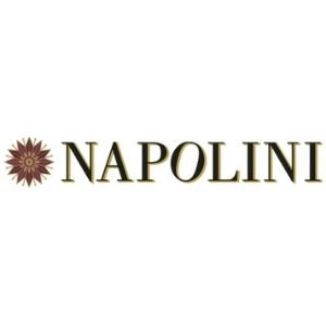 Logo-Napolini